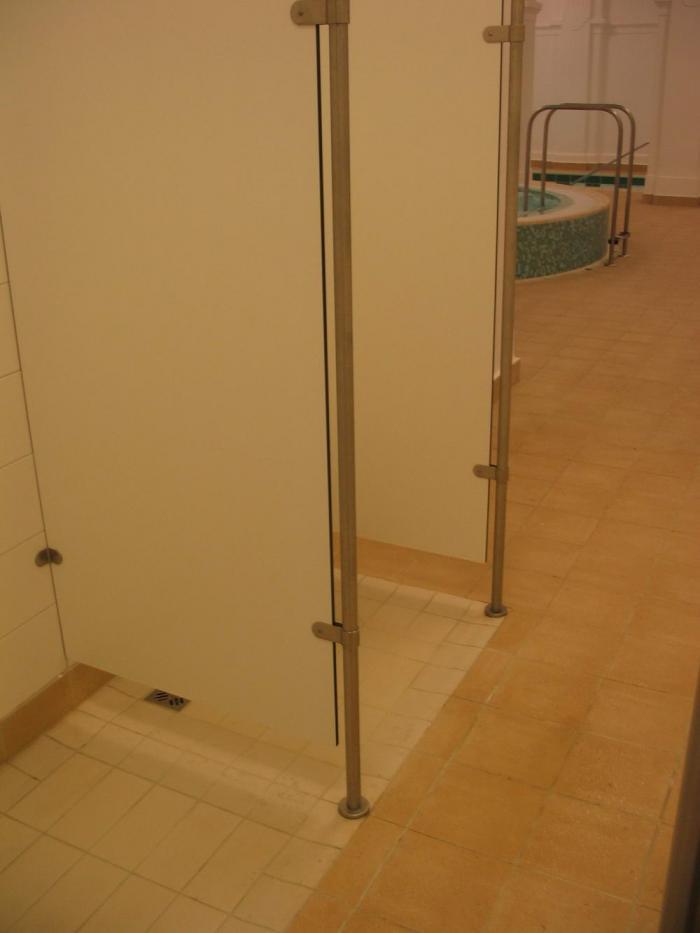 Zuhanyzók, részlet